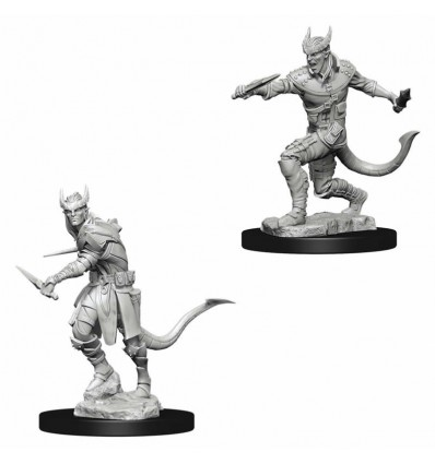 D&D Minis: Wave 5 - Tiefling Male Rogue