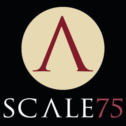 Scale-75.jpg